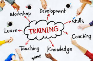 Diverse People and Training Concepts